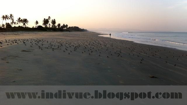 Fatrade Beach, Goa, India