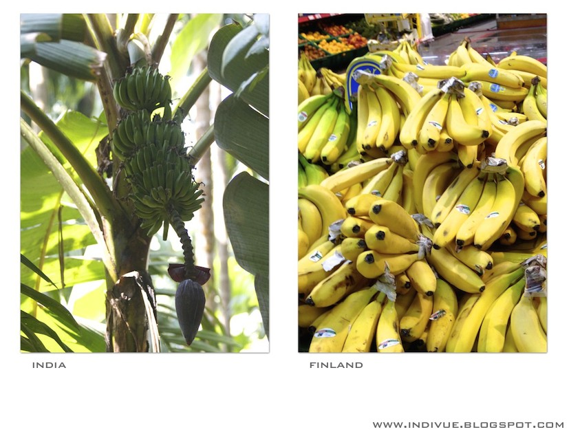 Bananas in India and in Finland