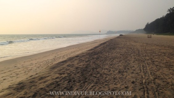 Galgibaga Beach in Goa, India, 2015