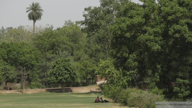 Green Delhi