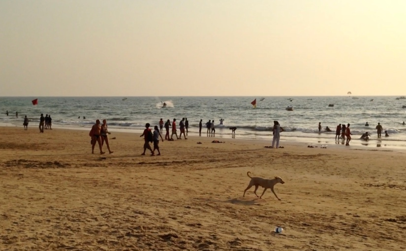 Video of Baga Beach in, Goa,India