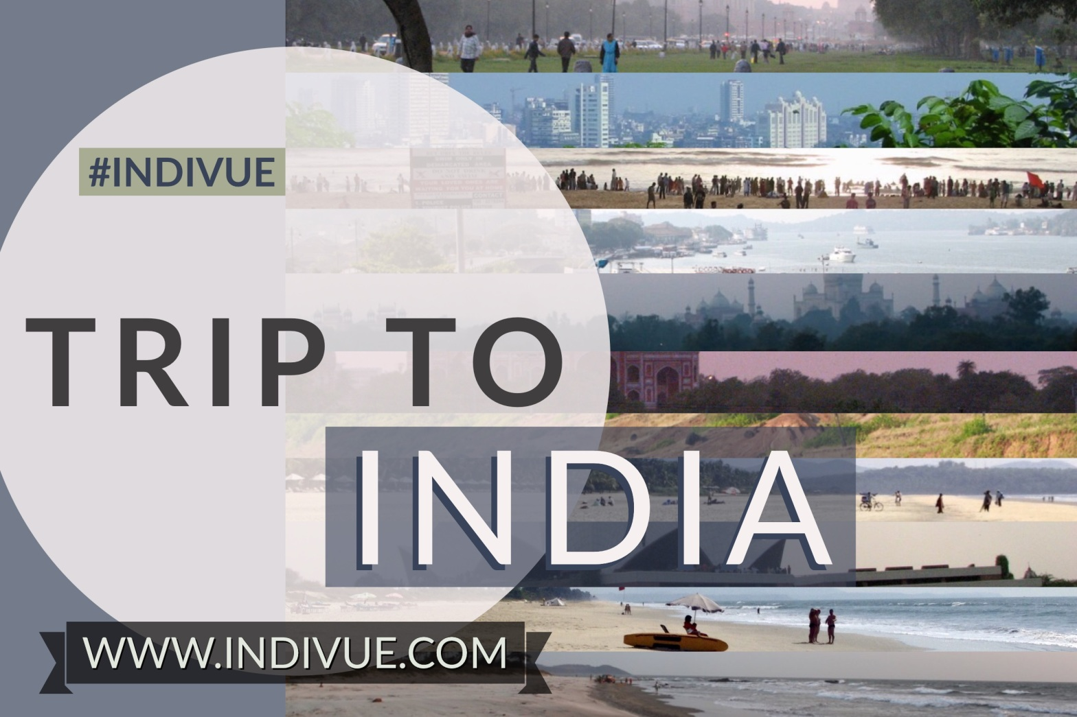 Cover image of INDIVUE -Trip to India in 2020