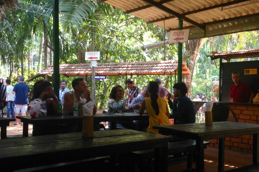 Sahakari Spice Farm Restaurant In Ponda taluka, Goa, India