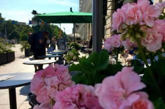 Flowers in Pohjoisesplanadi street restaurant terrace